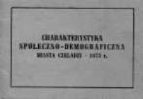 Charakterystyka społeczno-demograficzna miasta Czeladzi - 1975 r.