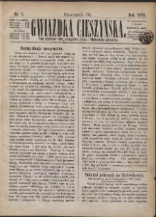 Gwiazdka Cieszyńska, 1878, Nry 1-52