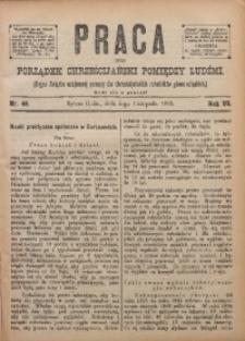 Praca, 1895, R. 6, Nr. 45