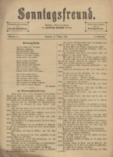 Sonntagsfreund, 1895, Jg. 6, Nr 41
