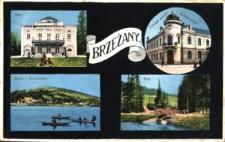 Brzeżany. Pocztówka wielopolowa z czterema ilustracjami: Rajem, urzędem pocztowy, stawem i Strożyskiem.