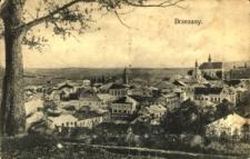 Brzeżany. Widok ogólny na panoramę miasta przed zniszczeniami spowodowanymi przez Rosjan.