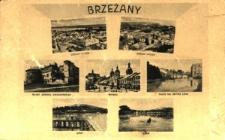 Brzeżany. Miasto po wyjściu Rosjan po I wojnie światowej z ruinami zamku, rynkiem, młynem i stawem.