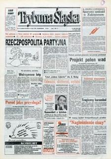 Trybuna Śląska, 1993, nr31